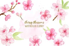 Watercolor Clipart cherry blossoms, pink flowers, spring flowers, printable instant download by CornerCroft on Etsy
