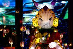 Lord rabbit, Taiwan