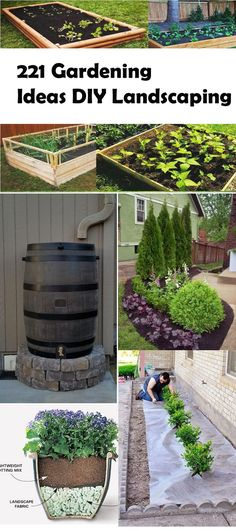 47 Cheap Landscaping Ideas For Front Yard - DIY Garten Landschaftsbau Cheap Landscaping Ideas For Front Yard, Backyard Pool Landscaping, Backyard Landscaping, Cheap Garden Ideas, Yard Ideas, Flower Landscape, Landscape Design, Garden Design, Diy Garden