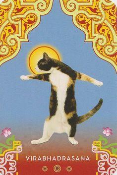 Cat Warrior Pose #Yoga