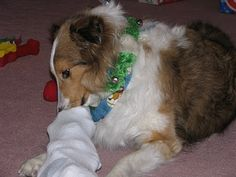 Dog Toys Knit and Crochet Free Patterns