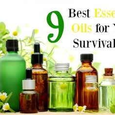 The 9 Best Essential Oils For Your Survival Kit