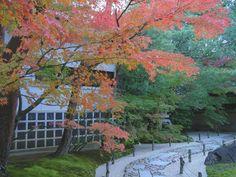 Adachi Museum, Japanese, Garden, Painting, Art, Art Background, Garten, Japanese Language, Lawn And Garden