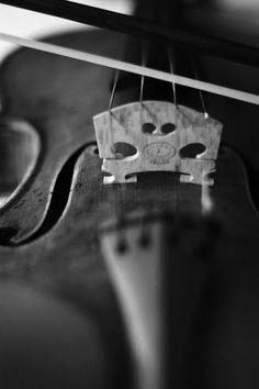 Love the Violin! Beautiful!