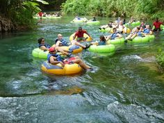 Tubing down Dunns River in Ochos Rio, Jamaica. The water was like bathwater!