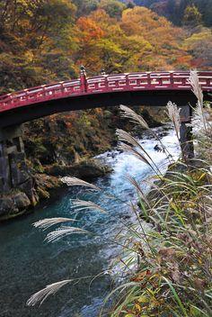 Nikko, Japan. More scenic Japan at http://scenic-calendars.com/japan-wall-calendars.htm