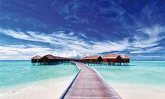 Die Lagune von Bora Bora steht im Ruf, die schönste der Welt zu sein. Auf Bora Bora gibt es eine Vielzahl von Wassersportmöglichkeiten: Sonnenbaden, Tauchen, Segeln, Jetski, Schnorcheln oder Ausflüge im Glasbodenboot, uvm. Bora Bora konnte seinen traditionellen Lebensstil erhalten, den man besonders an der Architektur seiner Luxushotels (den berühmten Überwasser-Bungalows) erkennt, erkunden Sie die Insel mit dem Fahrrad! Beste