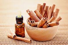 Óleo de canela - Benefícios, propriedades e como usar