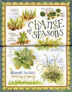 http://www.lesliefehling.com/2015/03/a-change-of-season.html