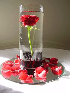 centerpiece?  but with a blue or yellow flower?    also this pic seems very beauty & the beast to me :P
