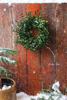 Boxwood Mini Wreath.