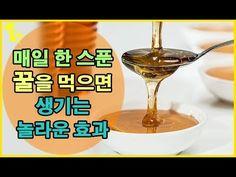 매일 한 스푼 꿀을 먹으면 생기는 놀라운 효과