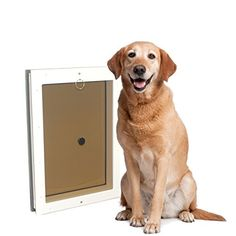 Door-mounted doggie doors from Freedom Pet Pass feature the DoubleMag™ airtight seal and are the only dog doors to meet CA Title 24 efficiency requirements. Dog Kennel Inside, Best Dog Door, Dog Door Flaps, Pet Door, Door Wall, Dog Lady, Puppy Care, Dog Lover Gifts, Large Dogs