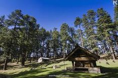 jibhi balu temple - Google Search Temple, Cabin, Google Search, House Styles, Home Decor, Cabins, Temples, Cottage, Interior Design