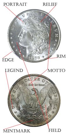 """Anatomy of a Coin - Coins have a story to tell...do you know the secret language of coins?  Visit """"Quick Guide to Coin Collecting""""...http://www.oldcoincollecting.com/coin-collecting-guide... and find out how!"""