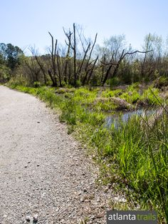 Top running spots in Atlanta: run the wide, level 5k loop at Cochran Shoals, one of the most popular parks in the Chattahoochee River National Recreation Area