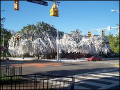 Toomers. Back when the trees were alive.