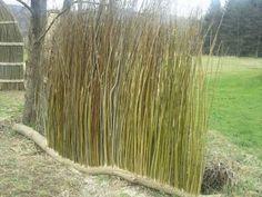 Sichtschutz Weide | Gartenobjekte, Gartenkunst, Sonnenuhren und Wasserspeier