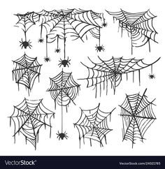 Collection of Cobweb isolated transparent background. Spiderweb for Halloween de. Spider Web Drawing, Spider Web Tattoo, Spider Art, Spider Webs, Halloween Designs, Halloween Decorations, Halloween Drawings, Halloween Illustration, Body Art Tattoos