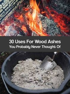 30 Uses For Wood Ashes. Wood ash can be useful in home gardens, in your compost…