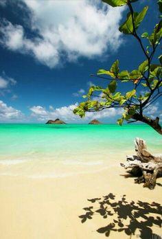 """Oahu. La variedad le da sentido a la vida, y en ningún otro lugar de Hawaii usted podrá encontrar la variedad que infunde esta isla. Oahu, bien llamada """"sitio de reunión"""", es una mezcla de muchas culturas. Es la isla más habitada de Hawaii y está marcada por la gran diversidad. Aquí las comunidades rurales y urbanas coexisten armónicamente y ofrecen a los turistas y residentes lo mejor de ambos mundos. www.ofertravel.es ©"""