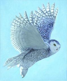 Hope Has Wings - Harlan