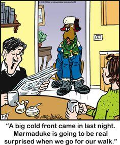 Dog Cartoons, Cartoon Dog, Funny Animal Pictures, Funny Animals, Cute Animals, Funny Posts, Funny Sayings, Funny Memes, Animals