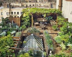 Sehrin ortasinda mukemmel bir bahce - Dream rooftop garden