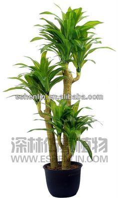 1~3 trunks fake brazil wood, artificial Tree, artificial plant tropical