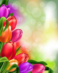 """Photo from album """"Фоны цветочные on Yandex. Boarder Designs, Frame Border Design, Page Borders Design, Framed Wallpaper, Flower Background Wallpaper, Flower Backgrounds, Vector Background, Flower Boarders, Flower Frame"""