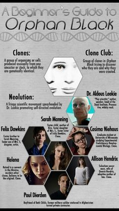 A Beginner's Guide to Orphan Black. Fun fact, (for those who remember!) Max Headroom can be found in the cast.