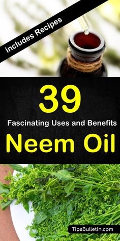 39 amazing uses and benefits of neem oil With detailed neem oil uses for health skin acne face hear beauty plants and garden Especially using it as natural pest control r. Herbal Remedies, Natural Remedies, Natural Treatments, Health Remedies, Neem Benefits, Health Tips, Health And Wellness, Diy Pest Control, Oil Uses