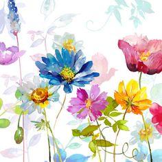 Harrison Ripley - Square Daisy & Poppy Floral Copy Copy