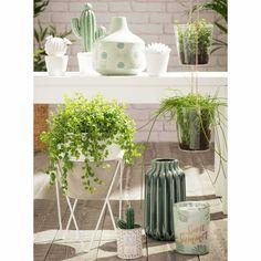 Statuette cactus en porcelaine ...