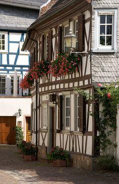 Eltville, Rheingau, Germany