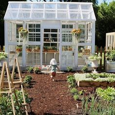 Backyard Greenhouse, Greenhouse Plans, Old Window Greenhouse, Farm Gardens, Outdoor Gardens, Garden Cottage, Home And Garden, Chicken Garden, Backyard Projects