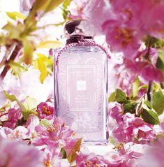 Jo Malone's Plum Blossom, love