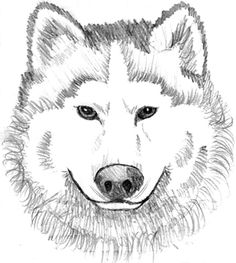 Find This Pin And More On Coloring Pages By Susan Oestmann