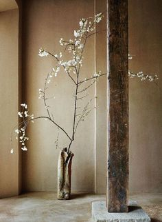"""""""Look at the cherry blossoms! / Their colour and scent fall with them / Are gone forever / Yet mindless / The spring comes again"""" - IKKYU - (Greenwich Hotel by Axel Vervoordt)"""