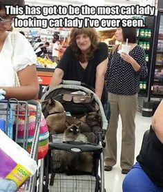 people of walmart: the Cat Lady People Of Walmart, Only At Walmart, Walmart Humor, Walmart Shoppers, Walmart Customers, Crazy People, Funny People, Stupid People, Crazy Cat Lady