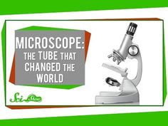 Microscope: The Tube That Changed the World - YouTube