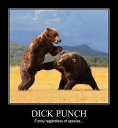 Don't poke the bear..