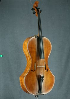 The Campanula: a 20-stringed cello!