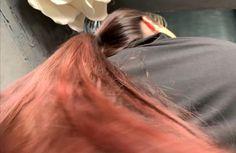 VIDEO - Red - RealRapunzels Long Hair Ponytail, Bun Hairstyles For Long Hair, Really Long Hair, Long Red Hair, Hair Buns, Hair Flip, Beautiful Long Hair, Great Hair, Her Hair
