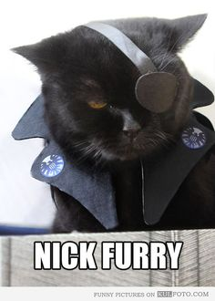 Nick Furry. It's a bad pun, but... no, actually, I'm not sorry.