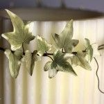 a detail of my Ivy leaves in sugar - an original idea for a country chic Christmas decoration - ww.mycakes.it