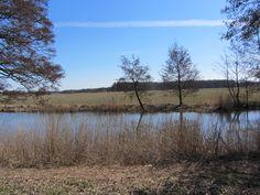Varsen landscape near Ommen
