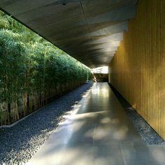 tokyo #travel #travelinspiration #travelphotography #tokyo #YLP100BestOf #wanderlust World Cities, Travel Inspiration, Cool Photos, Travel Photography, Sidewalk, Stairs, Museum, Exterior, Architecture