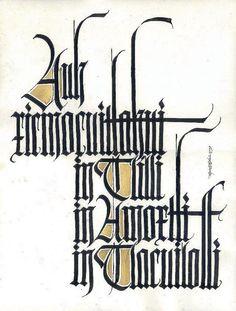 Assorted calligraphic works by Gabriel Martínez Meave, via Behance