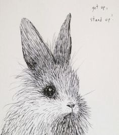 The Wild Unknown Birds & Bunnies Calendar (I can think of about 12 ppl who need this for xmas)